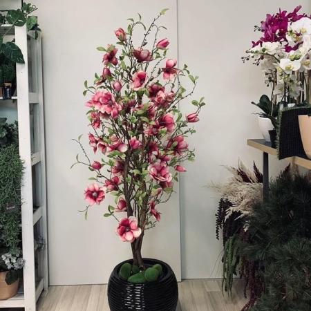 umetna magnolija 150 - cvetoče drevo