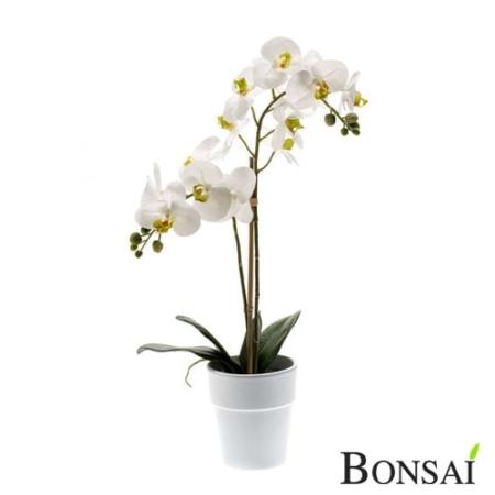 Orhideja aranžma 65 Real Touch v belem lončku