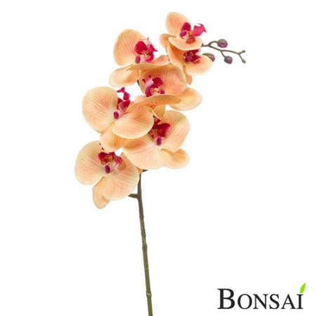 Orhideja veja RT 85 cm peach