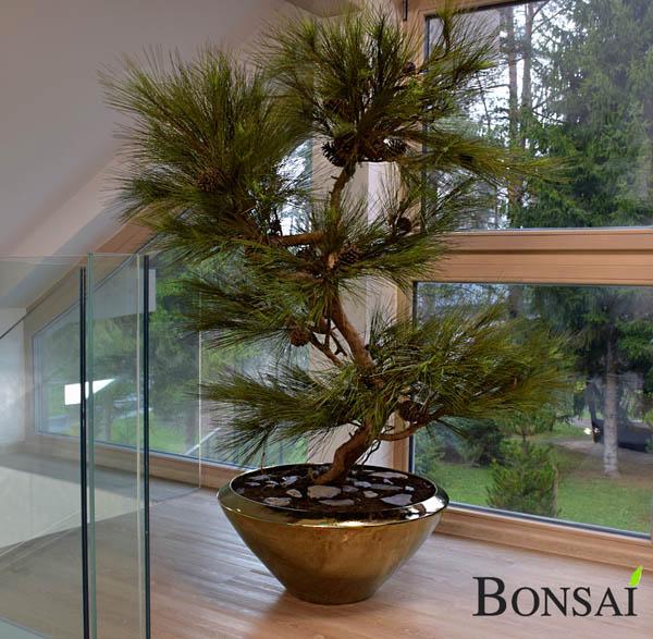 umetno drevo - umetni bor