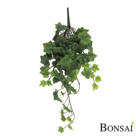 Bršljan sivo zelen 45 cm