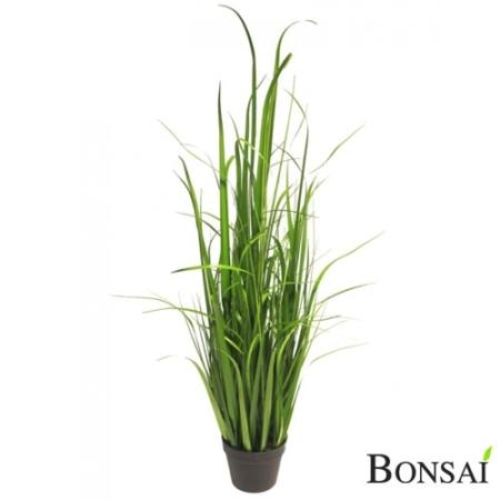 Trava v lončku 126 cm