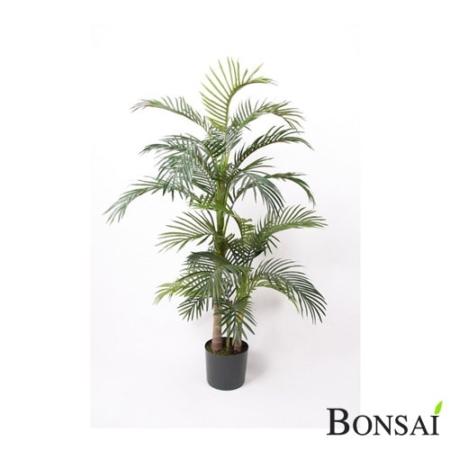 Areka palma 130 cm