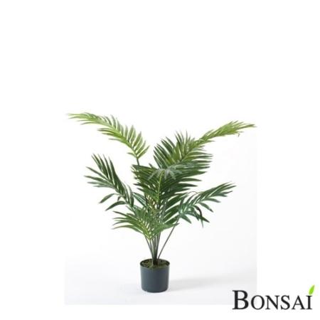 Palma Areka 90 cm