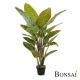 Umetna rastlina strelicija 130