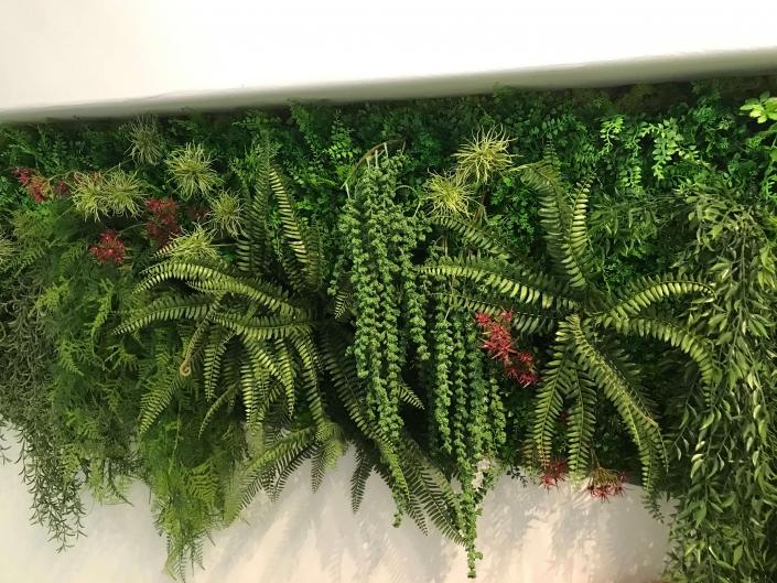 zelena stena - green wall z dodatnimi rastlinami by Bonsai Trzin