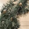 novoletna dekoracija - borova plezalka s storžki