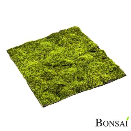 Zelena mahovnata plošča 100 cm x 100 cm
