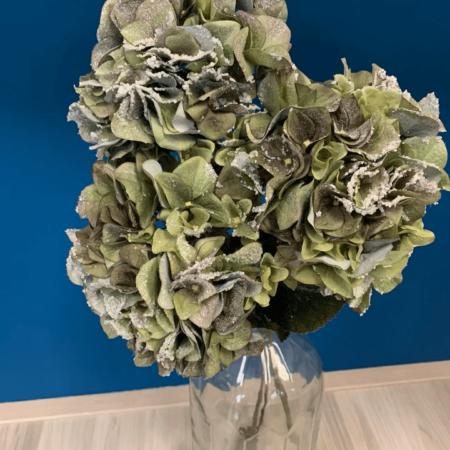 umetne hortenzije - zasnežene veje hortenzija