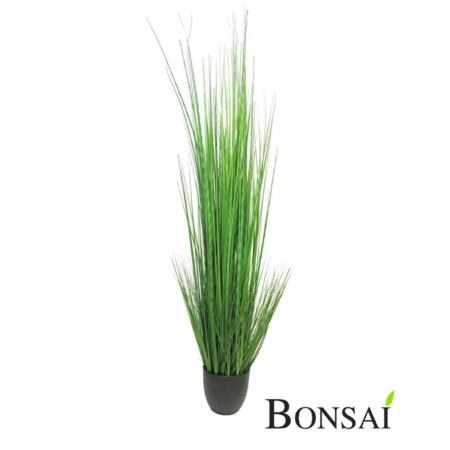 Umetna trava progasta 150cm v lončku