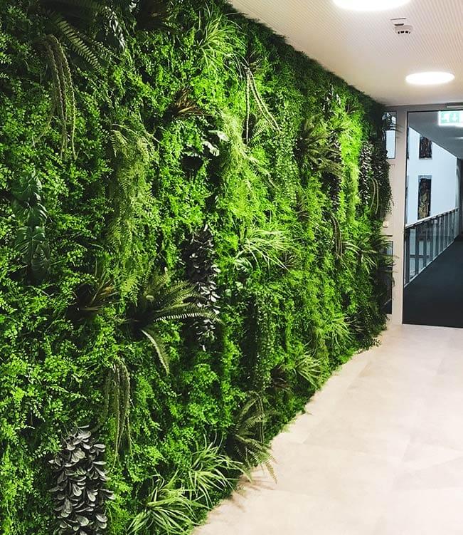 zelena stena by Bonsai