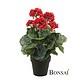 Umetna Geranija rdeča 35cm v lončku by bonsai
