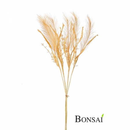 Umetna Pampaška trava peščena barva