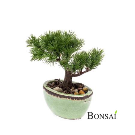 Umetni Bonsai Pinija 18 v glazirani posodi