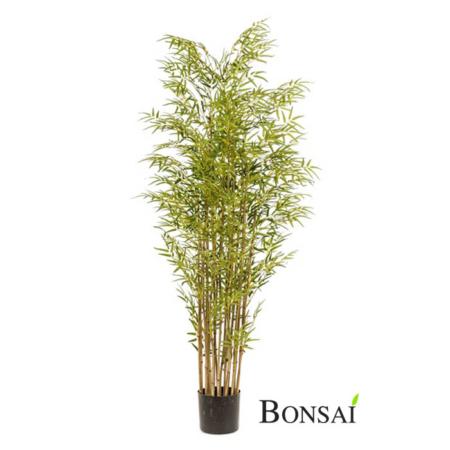 Umetni bambus 180cm - Japonski bambus
