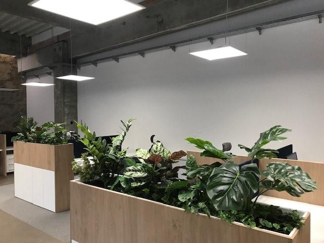 umetne rastline v prostoru