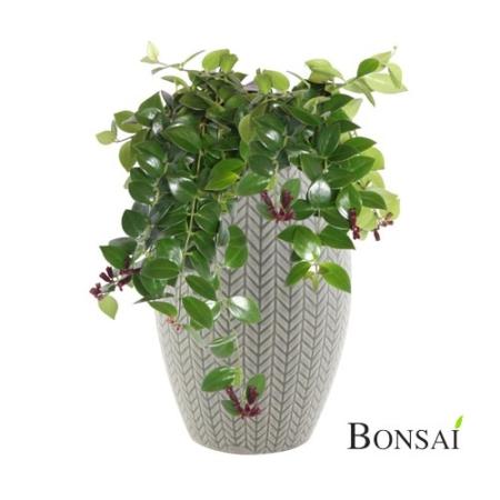 dekorativna vaza Petra 27x18-