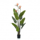 Umetna strelicija s cvetovi 120cm