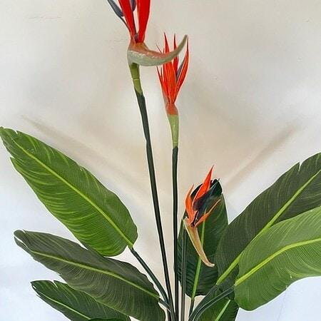 Umetna strelicija - umetne rože