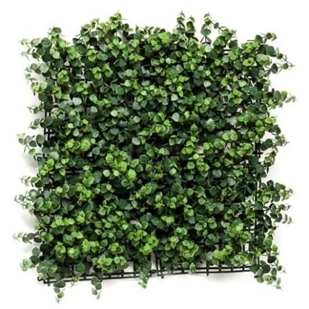Zeleni panel eukaliptus 50 x 50cm