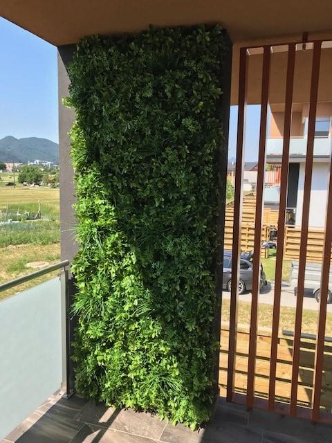 umetna zelena stena green wall zunanja Šeflera Bonsai